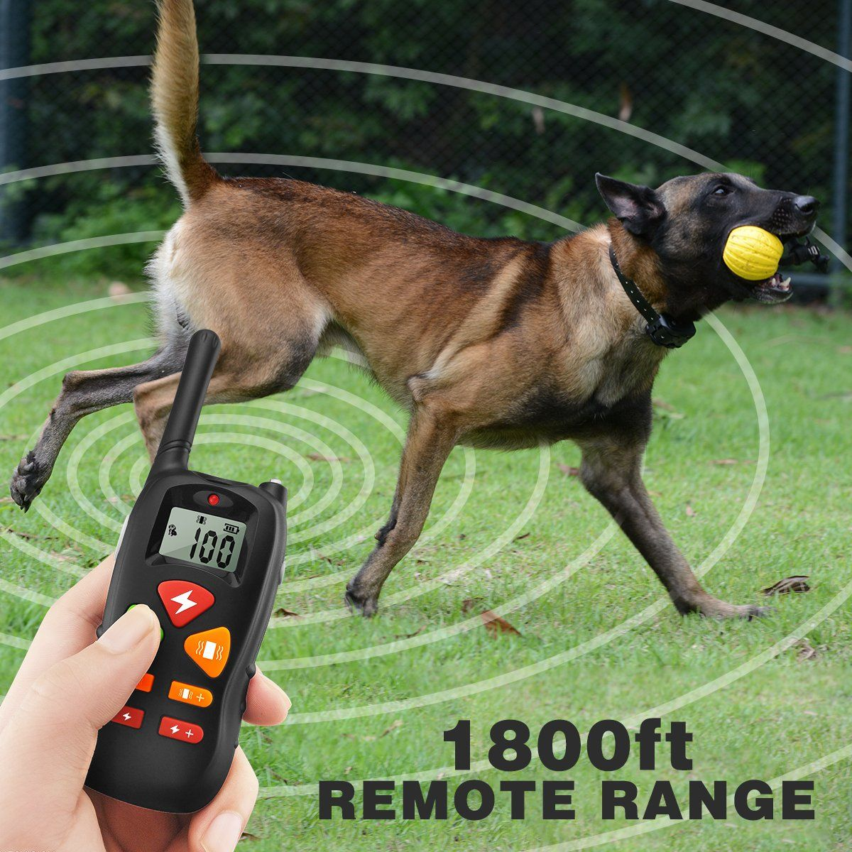 Dog Training Collar Remote Pet Dog Shock Collar With Beep 100