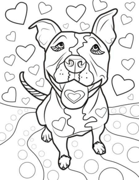 Pin By Marijane Morris On WHY I LOVE PIT BULL DOGS