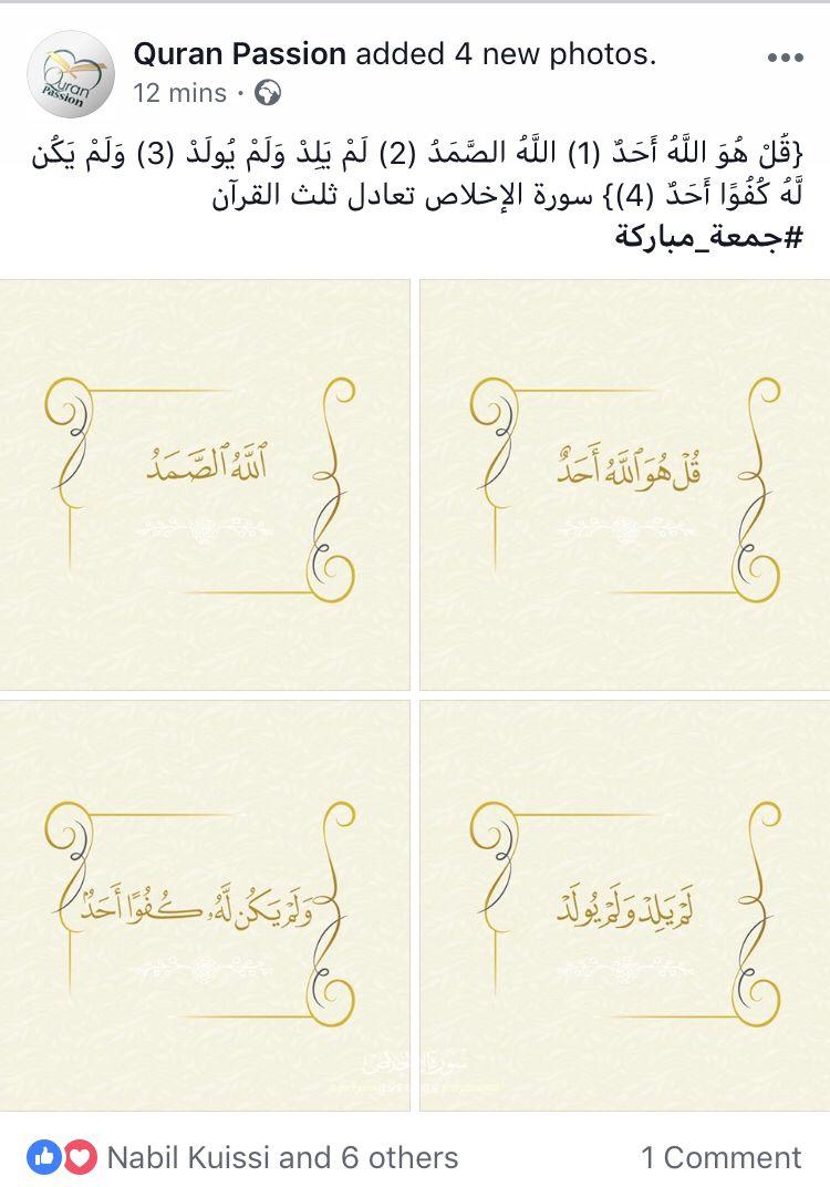 Quran Passion قرآن باشن Quran Wisdom Verses