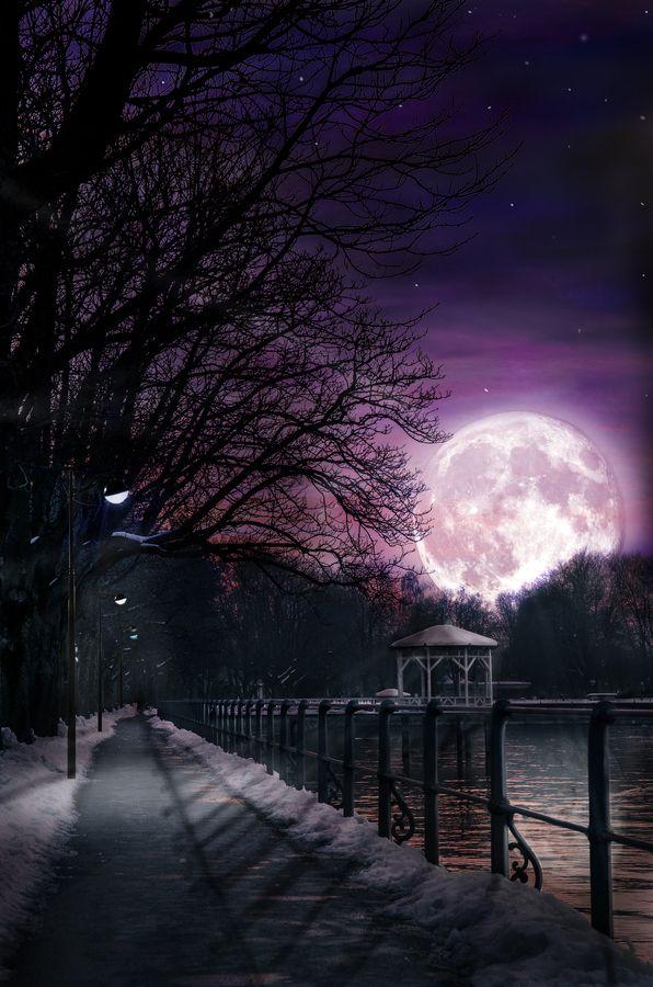 La luna posicionándose sobre la ciudad. #Luna #Morado #Noche