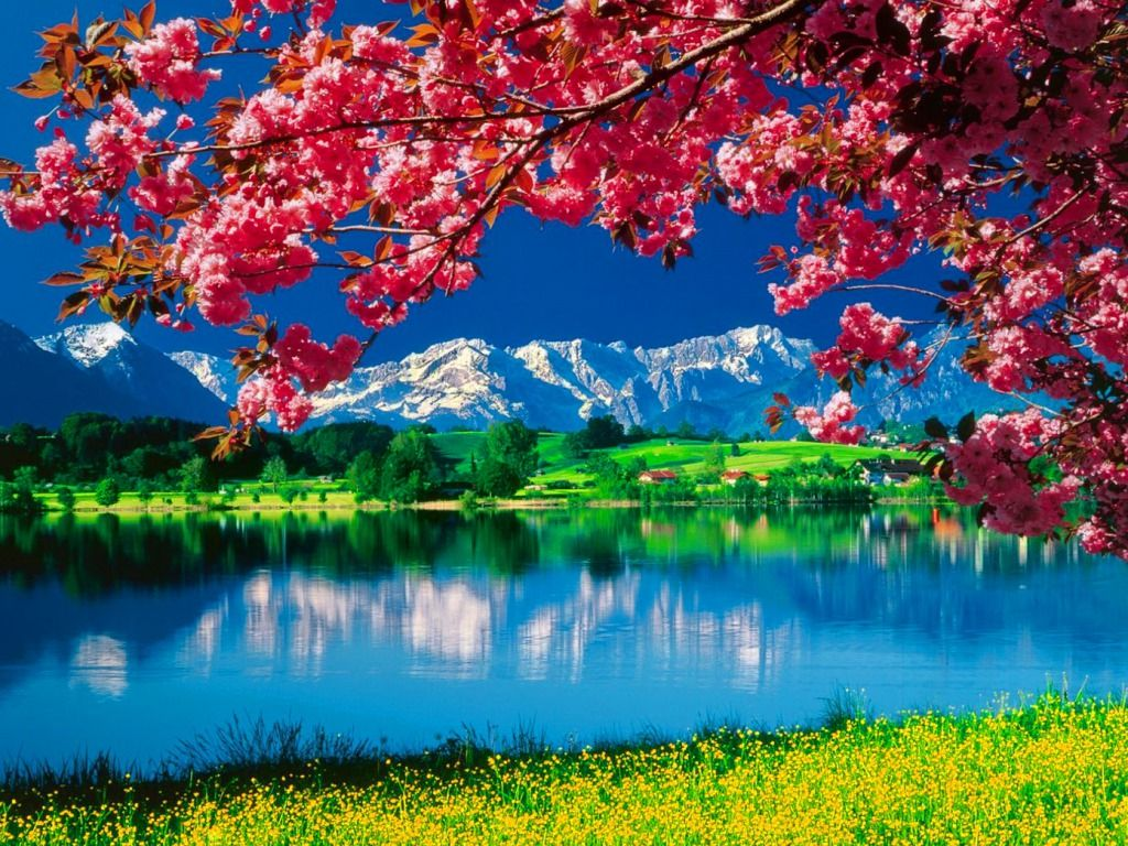 Best 25+ Beautiful nature wallpaper ideas on Pinterest ...