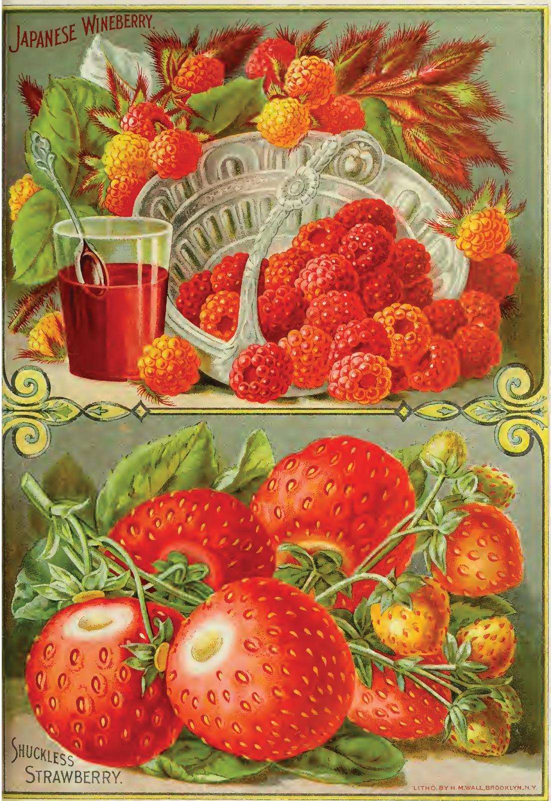 G Berry Kitchen Summer Strawberries Apron Cross Stitch Chart