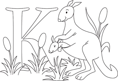Aneka Gambar Mewarnai Gambar Mewarnai Kanguru Untuk Anak Paud Dan