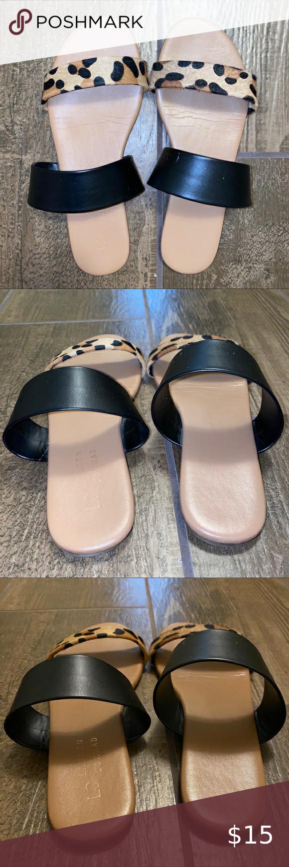 LC Lauren Conrad Shoes | Bundle Of Lauren Conrad Flip
