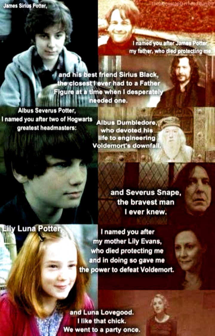 Memes Fine Memes Fine James Sirius Potter Lego Harry Potter Albus Severus Potter
