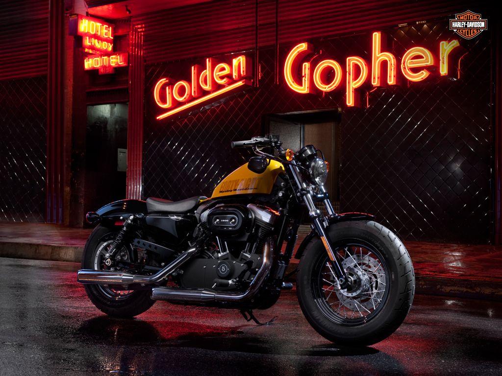 Wildcat Harley Davidson The Rider S Destination Harley Davidson Wallpaper Harley Davidson Motorcycles Harley