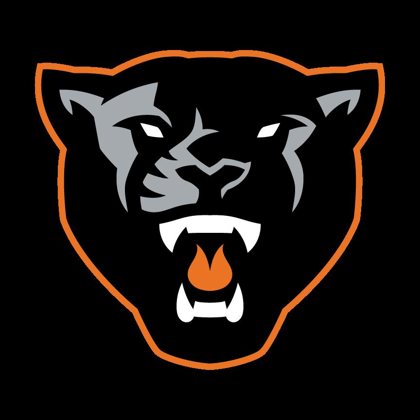 Panther Logo Google Search Panther Logo Panther Logo Design