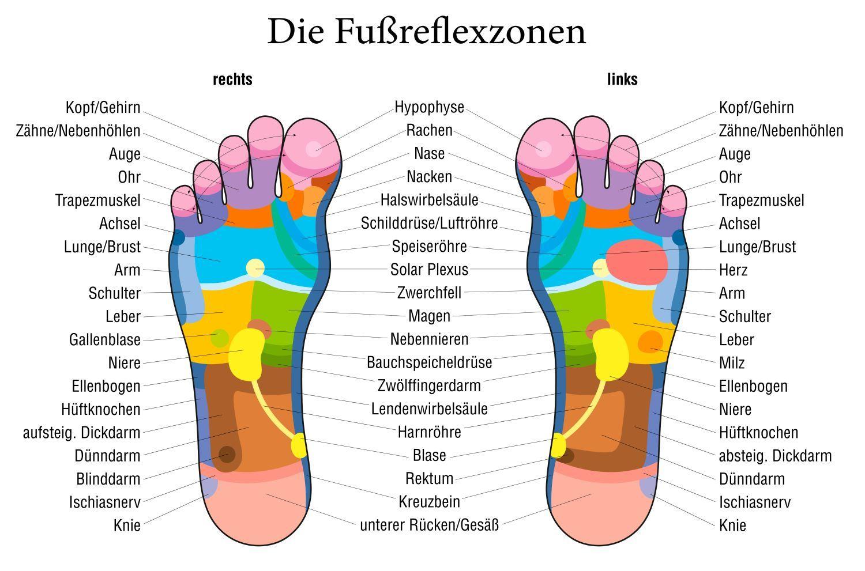 fußreflexzonen - Google-Suche | Gesundheit | Pinterest | Suche ...