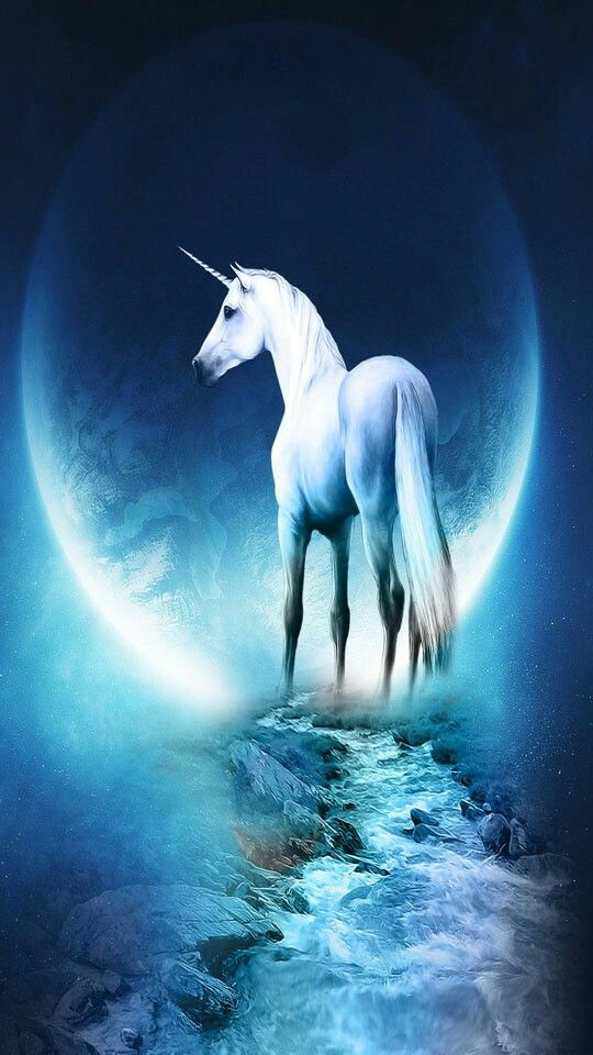 Unicorn Unicorn Wallpaper Fantasy Horses Horse Wallpaper
