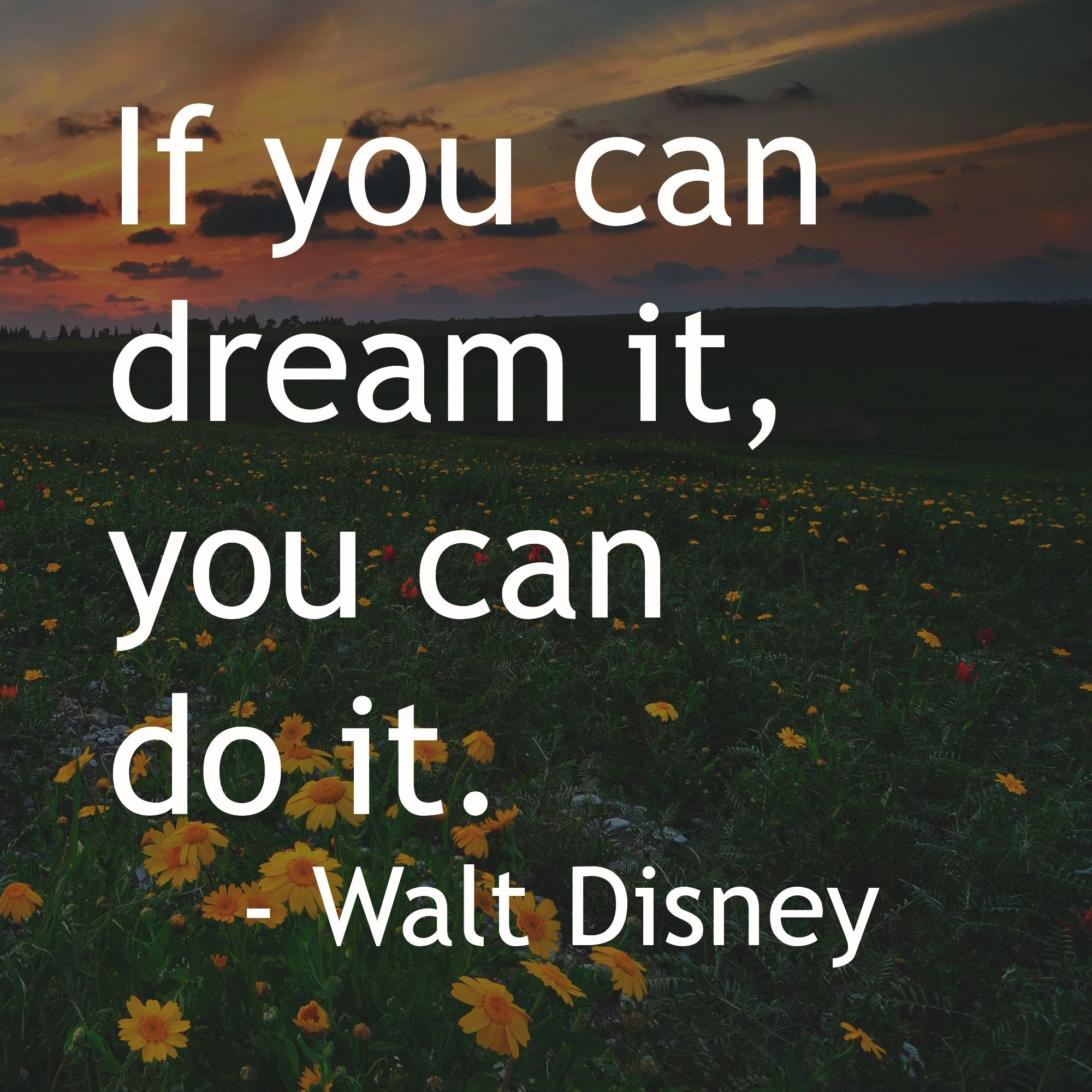 """Philosophy Quotes If You Can Dream It You Can Do It.""""  Walt Disney Inspiration"""