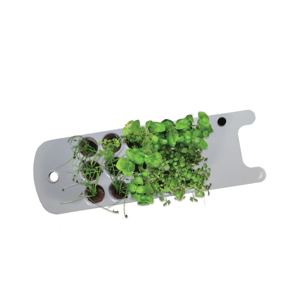 Aerogarden Seed Starting System Accessory For Sprout 400 x 300