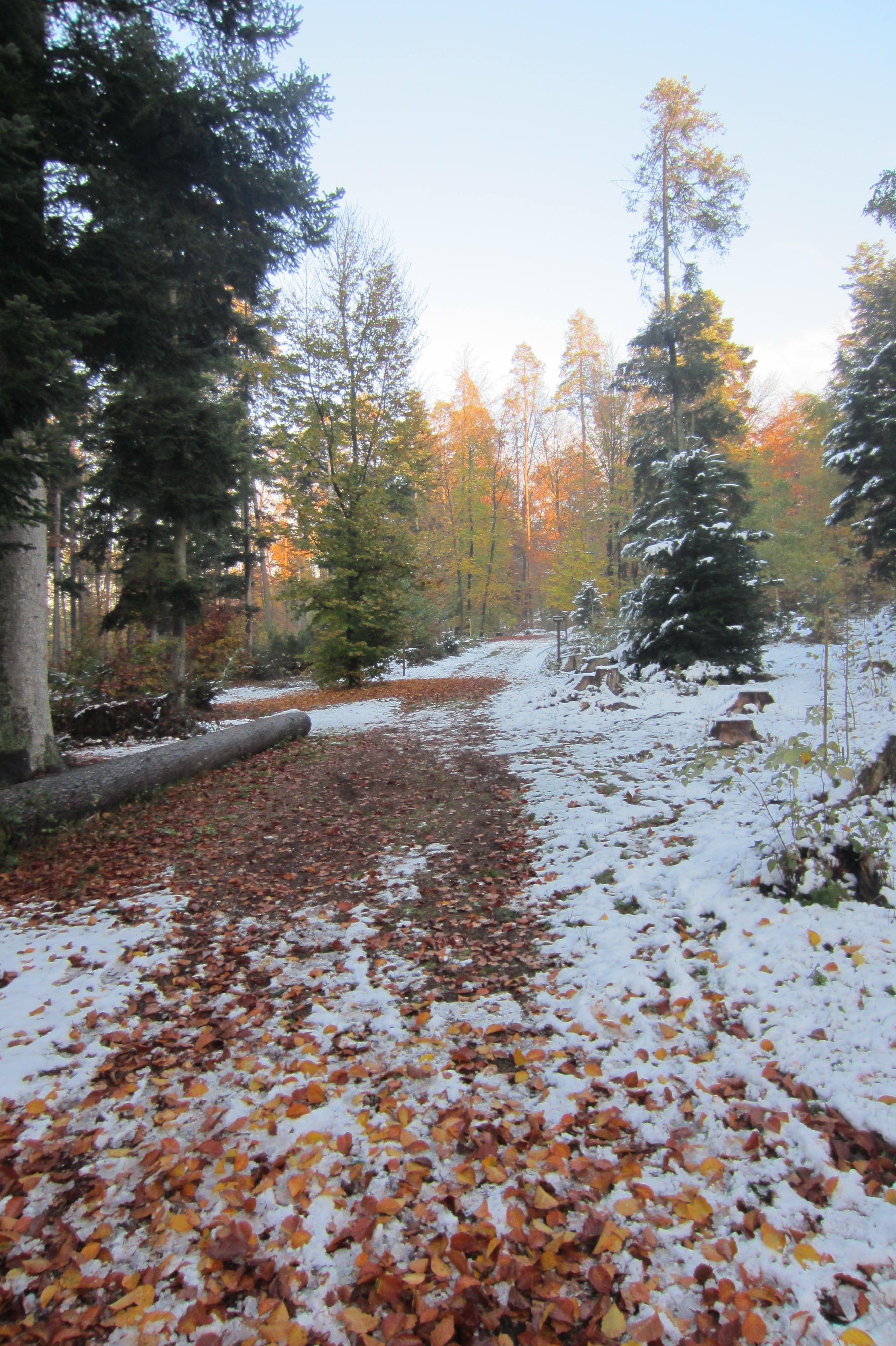 First snow, take a deep breath