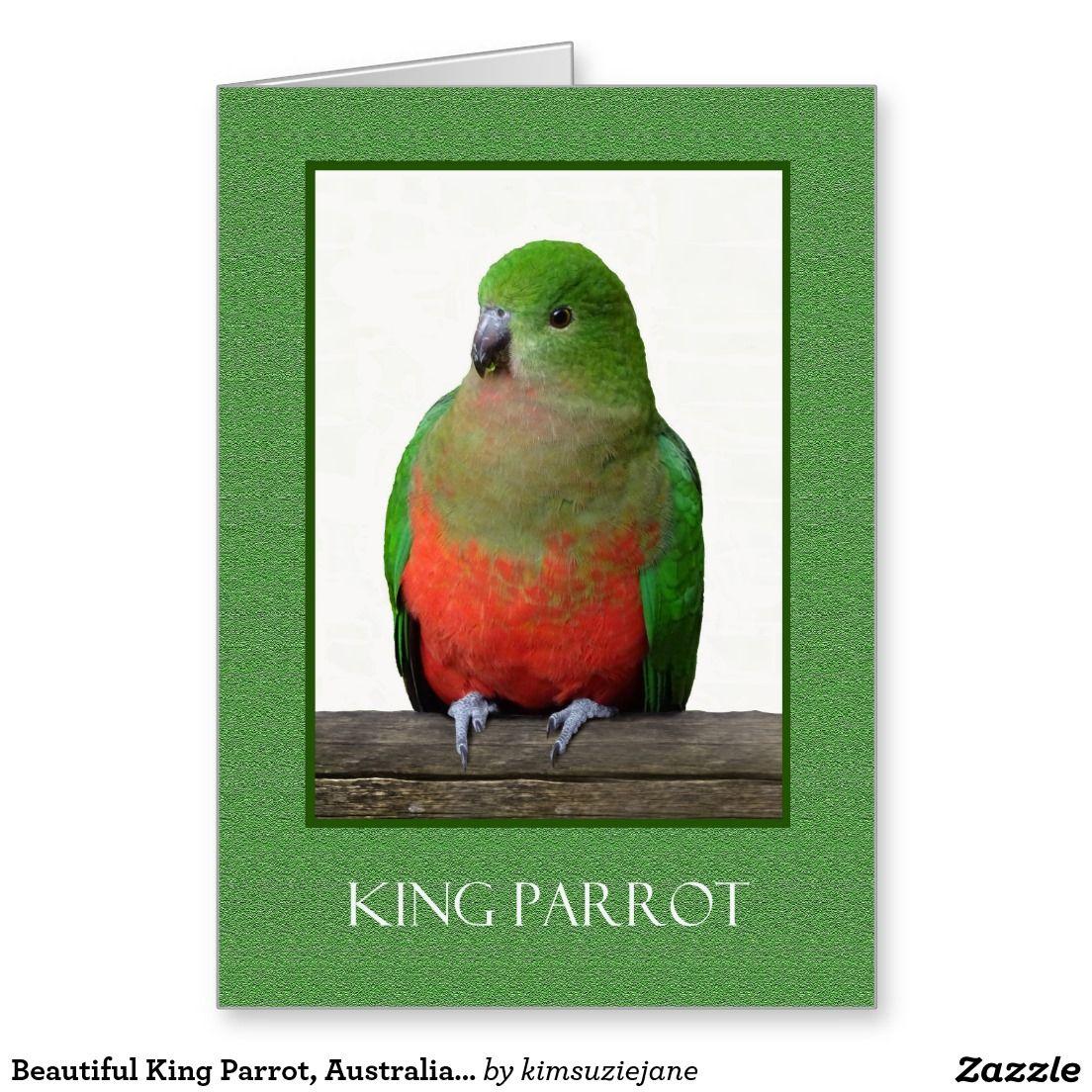 Beautiful King Parrot Australian Bird Greeting Cards Pinterest