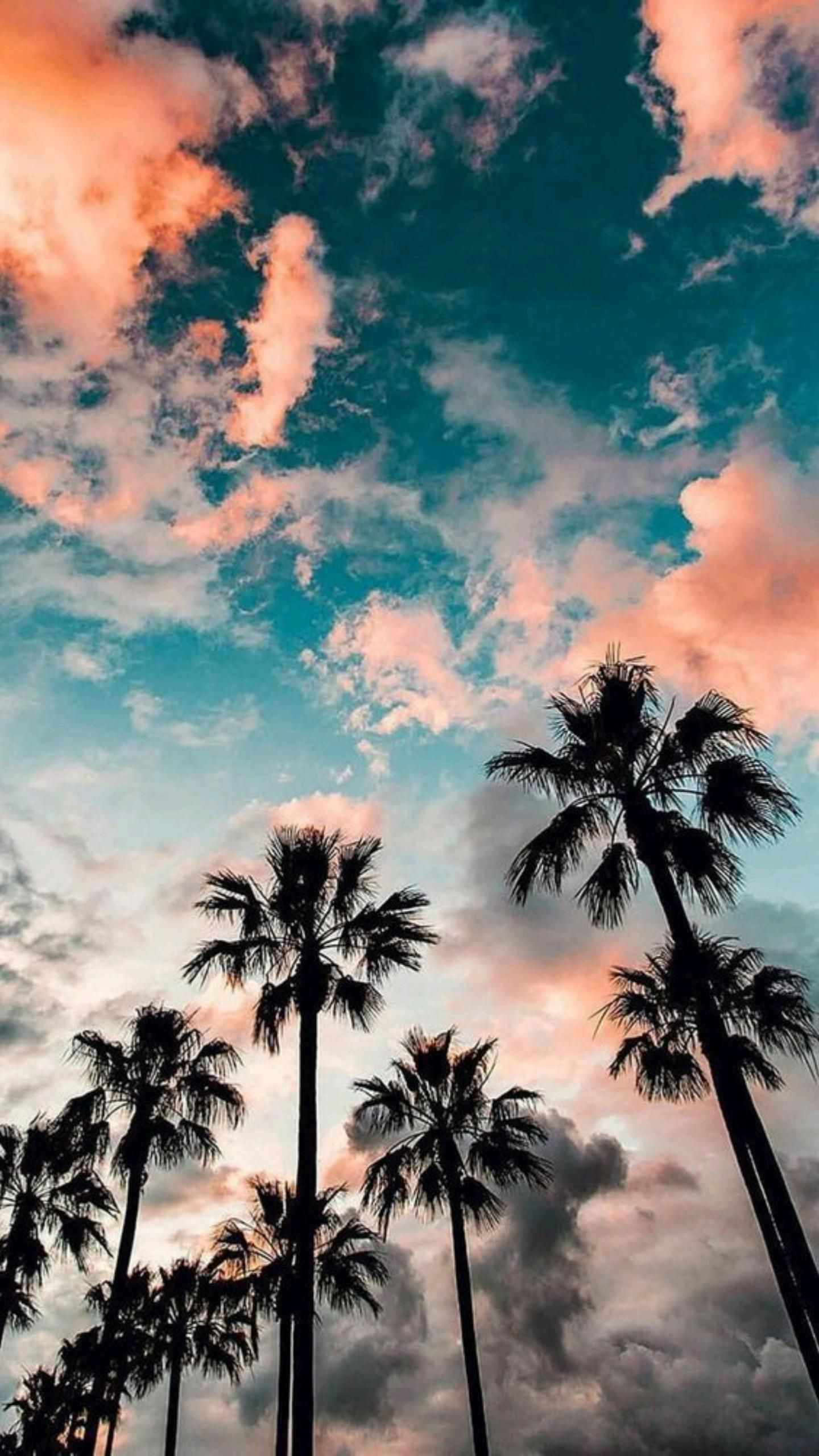 18 free beautiful summer wallpapers for iPhone
