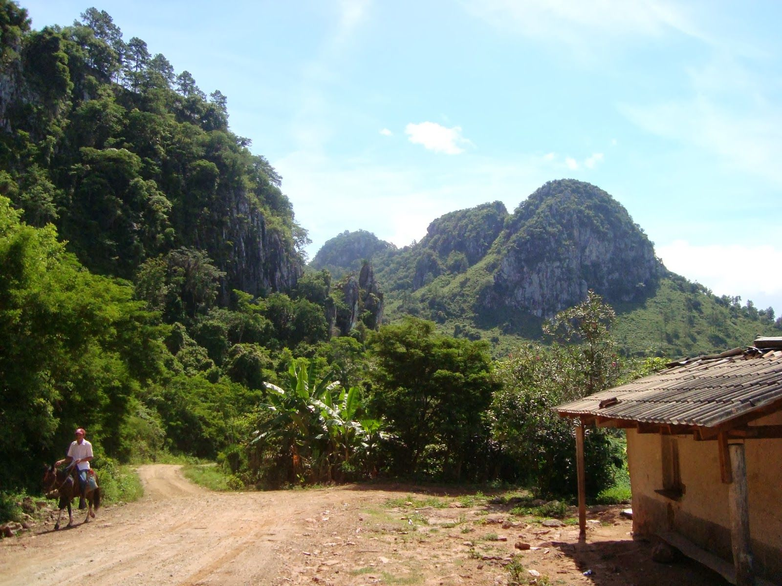 Montaña en el departamento de Yoro, Honduras   Natural landmarks,  Landscape, Honduras