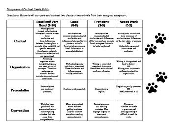 grading rubric for essays middle school