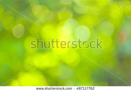 Natural Green Blurred Background Abstract Bokeh And Blurred Green Nature Background