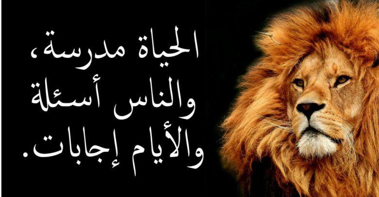 اقوال وحكم مأثورة عن الحياة وكلام من ذهب Funny Emoticons Arabic Quotes Funny Texts