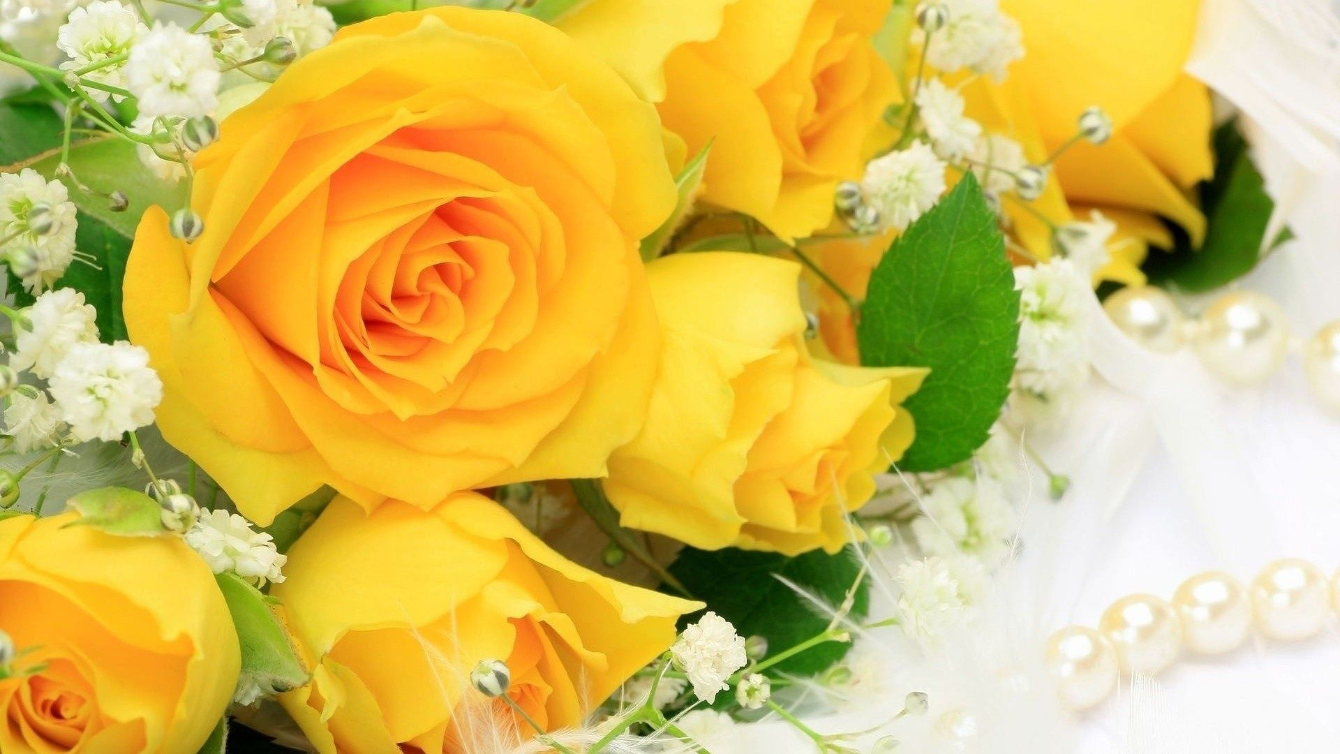 Rose Wallpapers For Desktop Full Size Hq Pictures 13 Hd Wallpapers Yellow Rose Bouquet Yellow Roses Peach Colored Roses