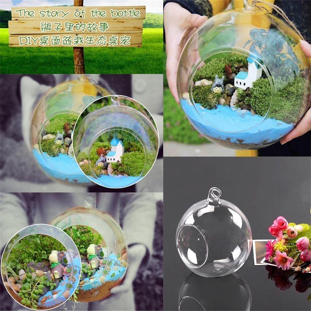 X globe ball glass hanging plant terrarium flower vase pot wall