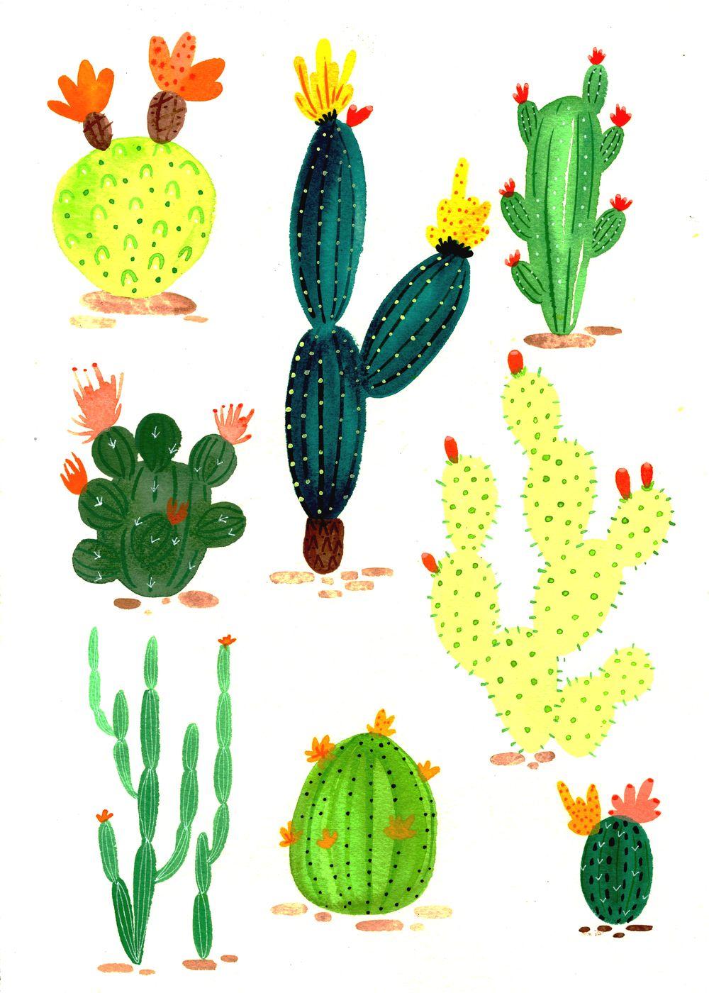 cactus patter 2.jpg