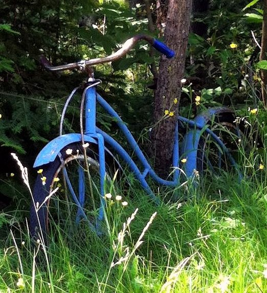 Life is like a ten speed bicycle. Most of us have gears we never use.  ~ Charles M. Schulz by katerha, via Flickr