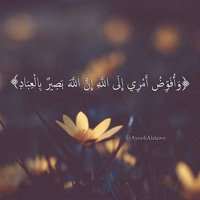 و أ ف و ض أ م ر ي إ ل ى الل ـه إ ن الل ـه ب ص ير ب ال ع ب اد Arabic Quotes Holy Quran Islamic Quotes