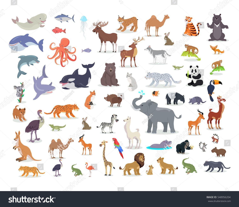 Big Set Of Wild Animals Cartoon Vectors African Australian Arctic Asian South And North American Fauna Cartoon Animals Animals Wild South African Animals