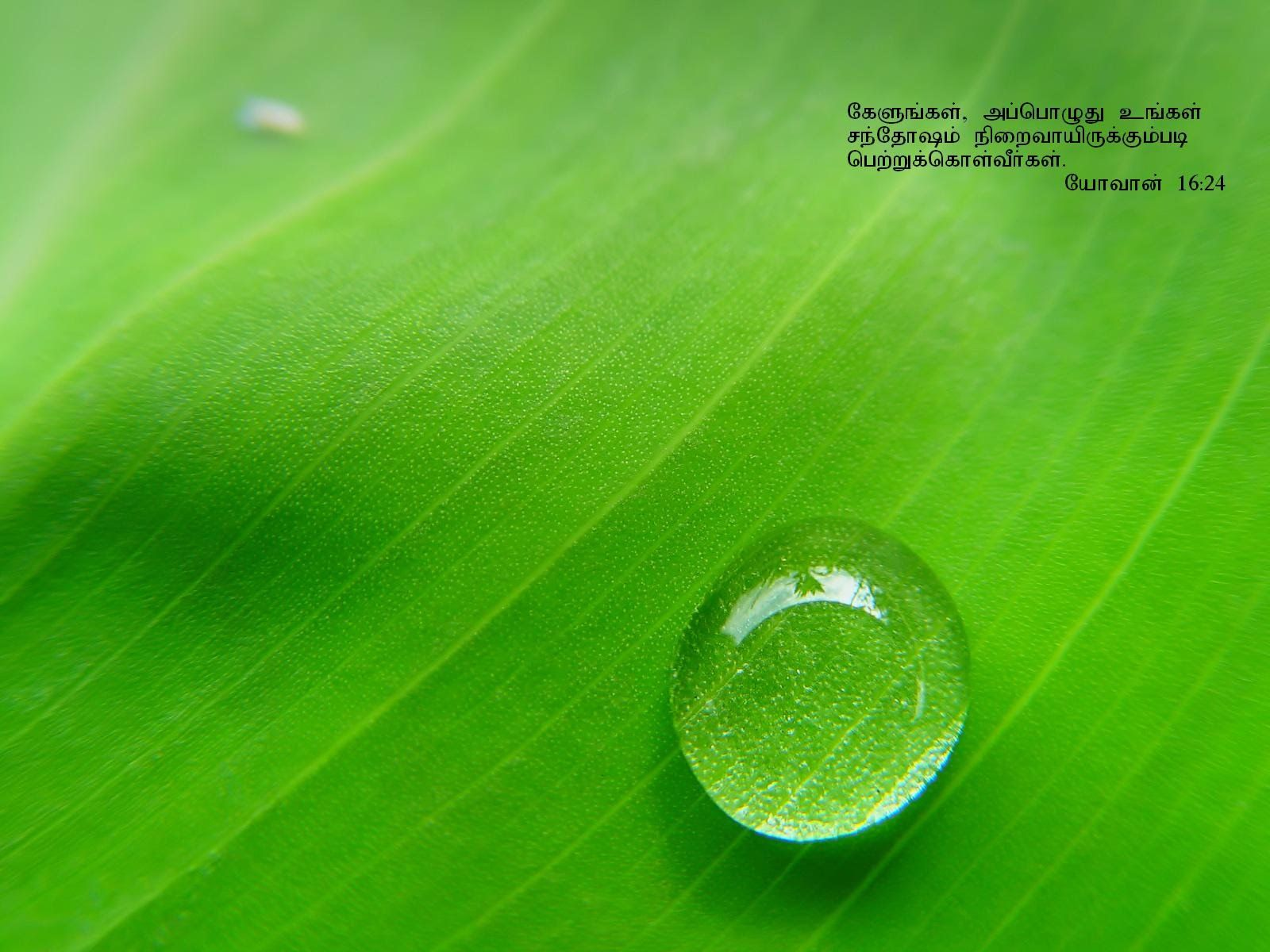 Water Droplets Quotes Underbergdorfbibco