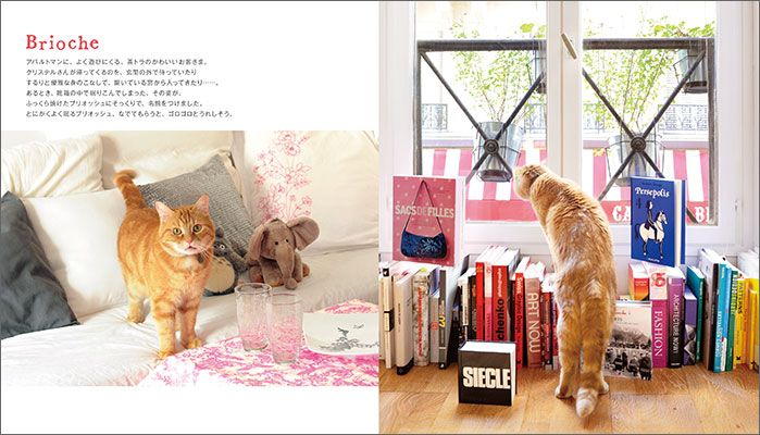 Mon petit chat de Paris, edited and published by édition Paumes. ジュウ・ドゥ・ポゥム著『パリのおうちネコ』より
