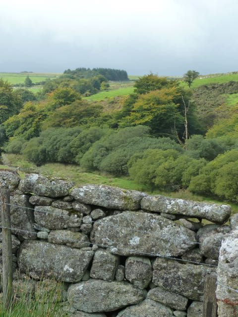 In The Mending Wall Robert Frost questions whether the walls we put up between us are really necessary. This blog post on The Mending Wall Metaphor give a contemporary reflection on this well know and much loved poem.