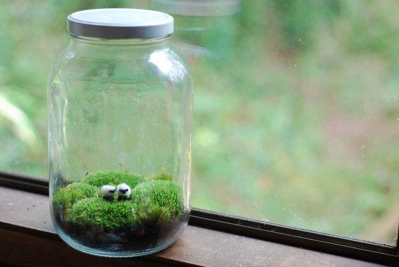Terrarium irische Landschaft mit kleinen wolle Schafe moss terrarium