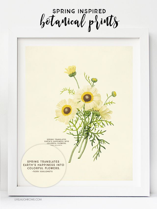 FREE Printable Wall Art. Choose from two Spring Botanical Prints ...