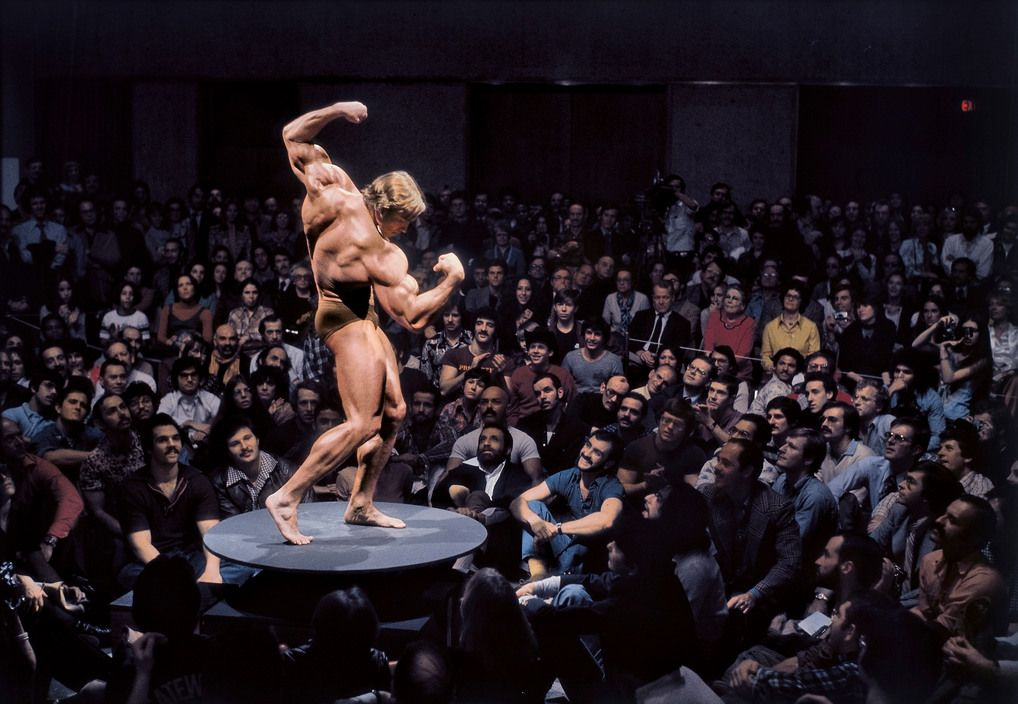 Image result for body as art museum arnold