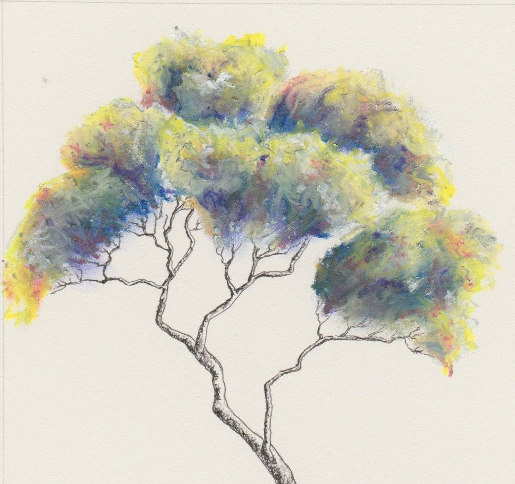 Oil Pastel And Ink Tree Painting A4 Paper By Annelawsonart On