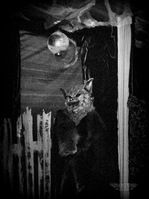 Halloween Haunted House Tour Urban Fringe Living Halloween - halloween haunted house ideas