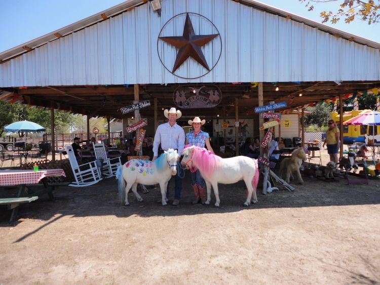 hitchin post ponies houston pony parties houston childrens