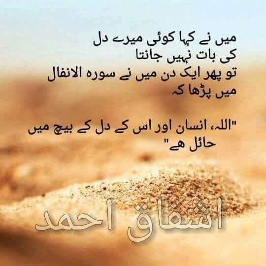 bilkol ghatiya hain log   HAQ   Sufi quotes, Urdu quotes, Urdu words