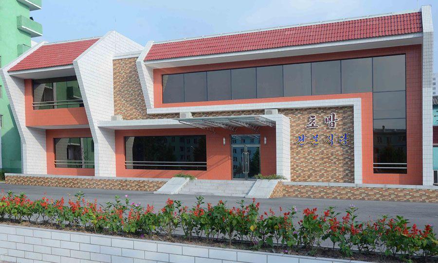 당의 은정속에 일떠선 평양초밥전문식당 개업