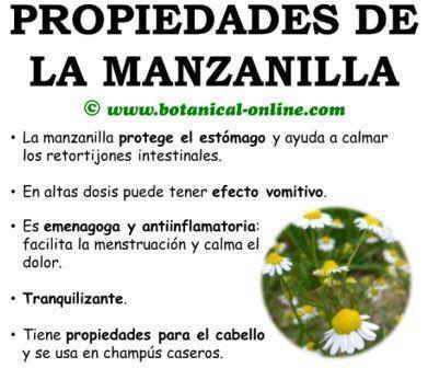 propiedades medicinales y curativas de la manzanilla