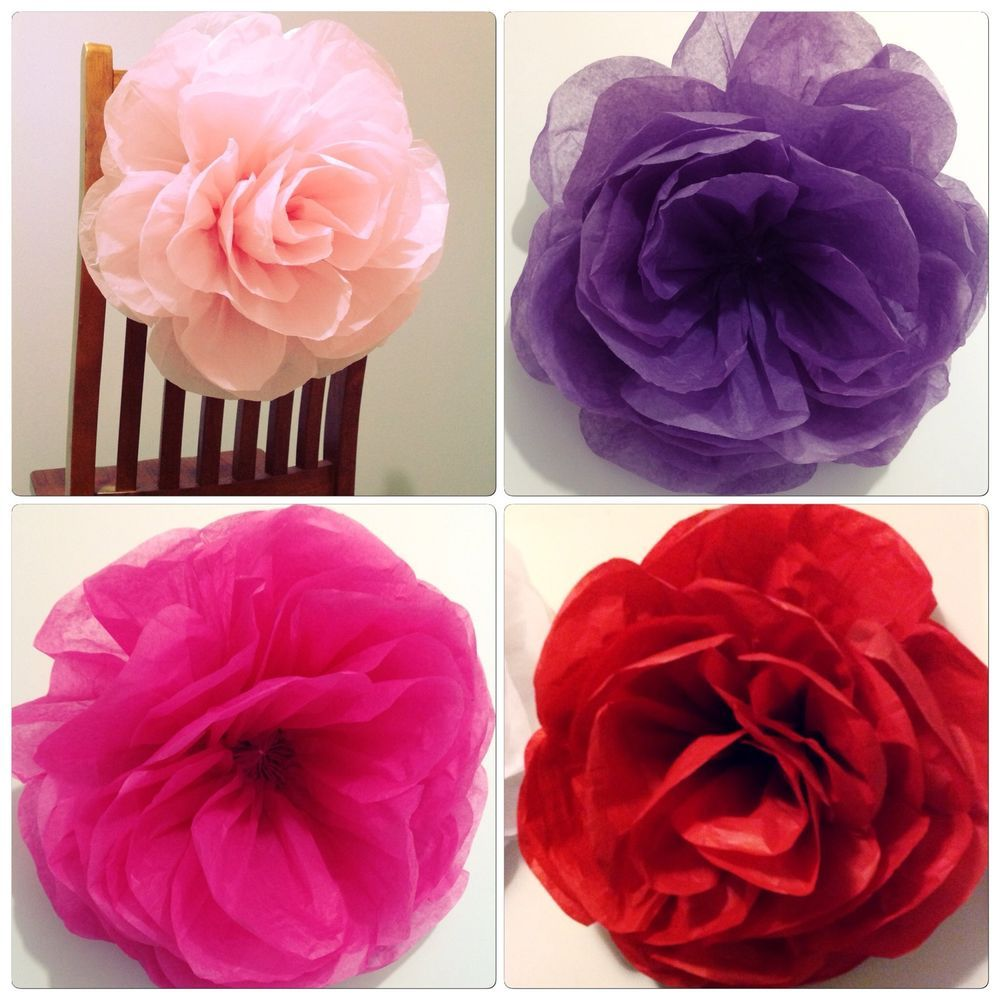 Paperbloomz Large Paper Roses Tissue Paper Flowers Wall