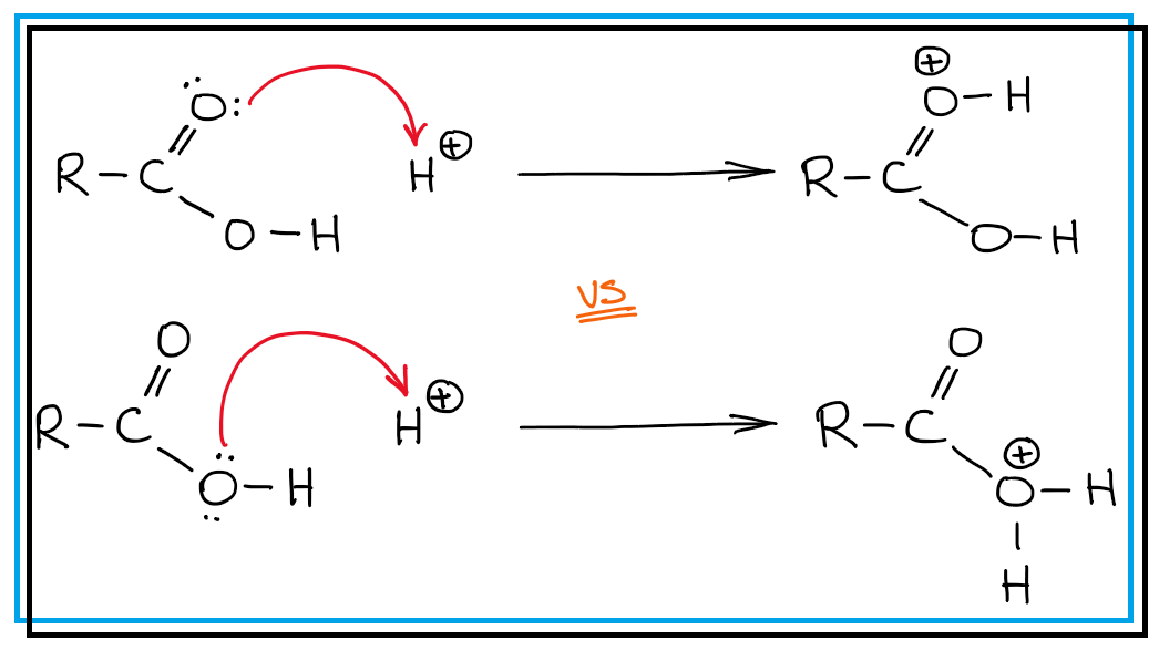 Photo of Protonating A Carboxylic Acid: Which Atom To Choose? — Organic Chemistry Tutor