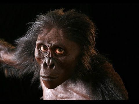 Becoming Human Evolution From Ape To Man Documentary 2017