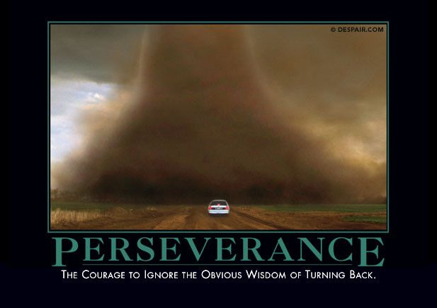 Perseverance Demotivational Quotes Demotivational Posters Perseverance