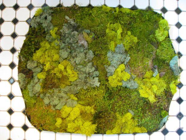 Make a moss shower mat for Make a moss bath mat