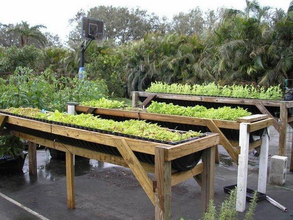 raised beds construction DIY vegetable garden ideas Vegetable