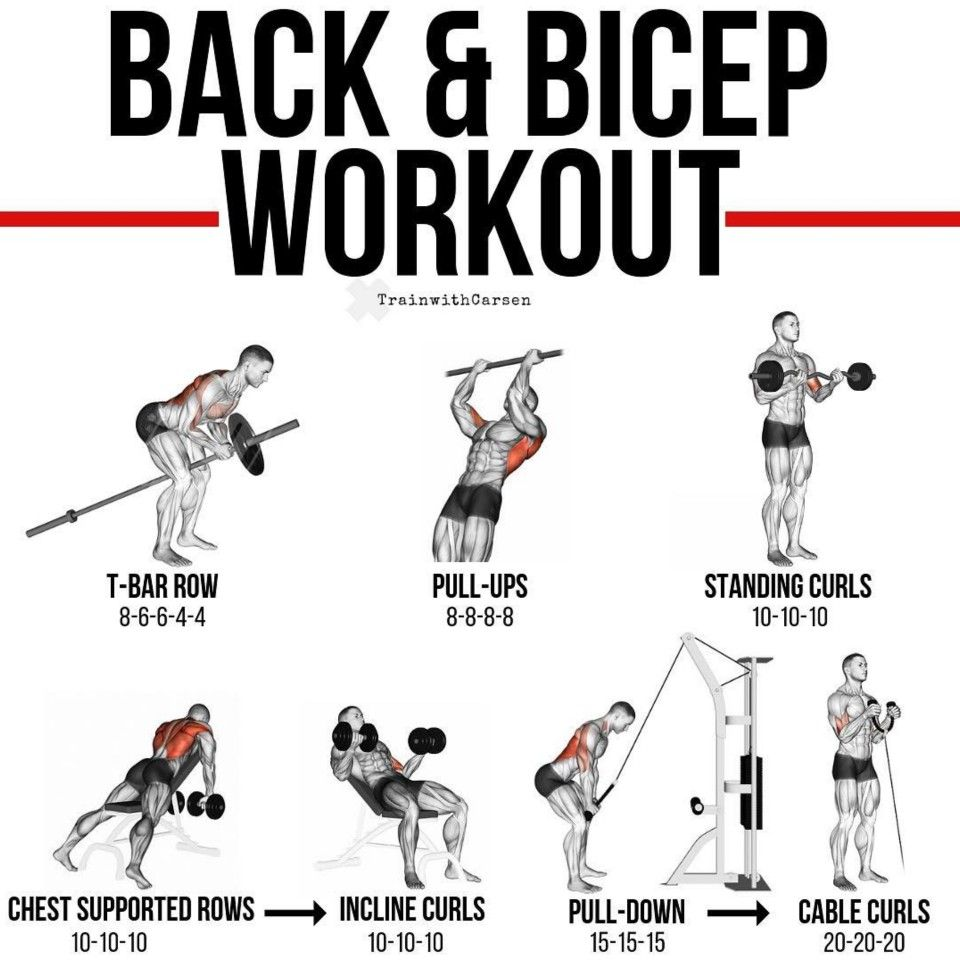 Back Bicep Workout By Trainwithcarsen Back And Bicep Workout Biceps Workout Back And Biceps