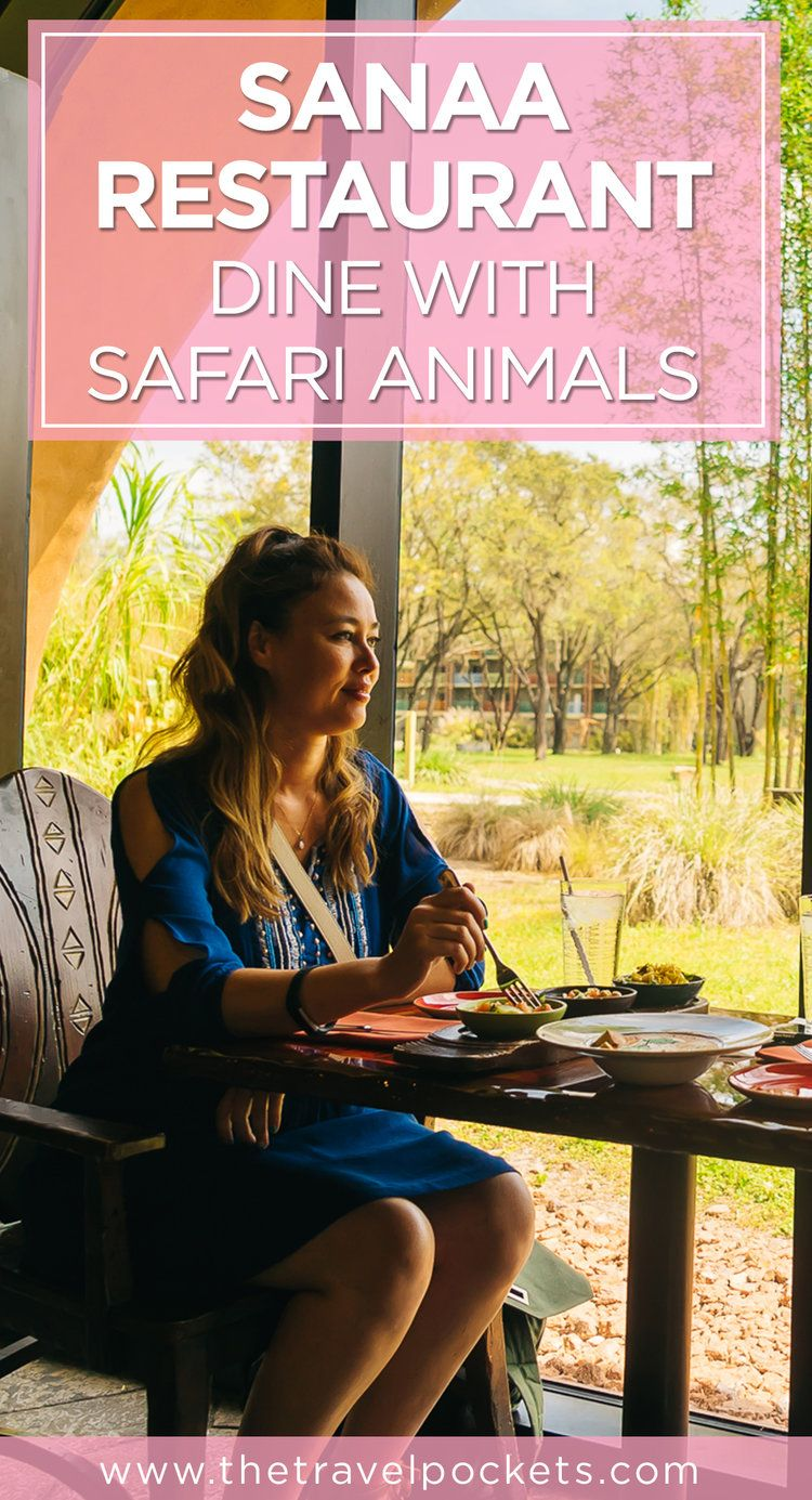 Dine with safari animals at animal kingdoms sanaa