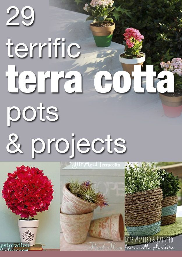 29 Terrific Terra Cotta Pots U0026 Projects.