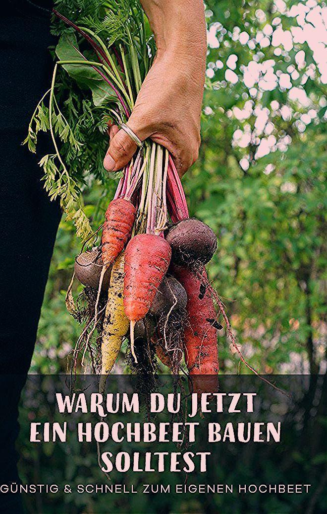 Photo of In 2 Stunden ein Hochbeet bauen und befüllen. – Gartenblog Hauptstadtgarten